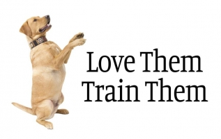 Love Them Train Them LLC