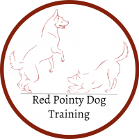 Red Pointy Dog Training