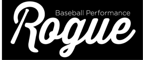 Rogue Baseball Performance