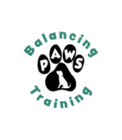 Balancing Paws Dog Training