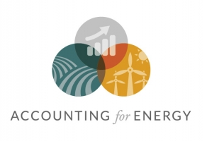 Accounting for Energy