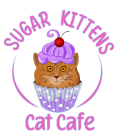 Sugar Kittens Cafe and Cattery