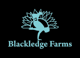 Blackledge Farms